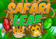 Safari Leaf